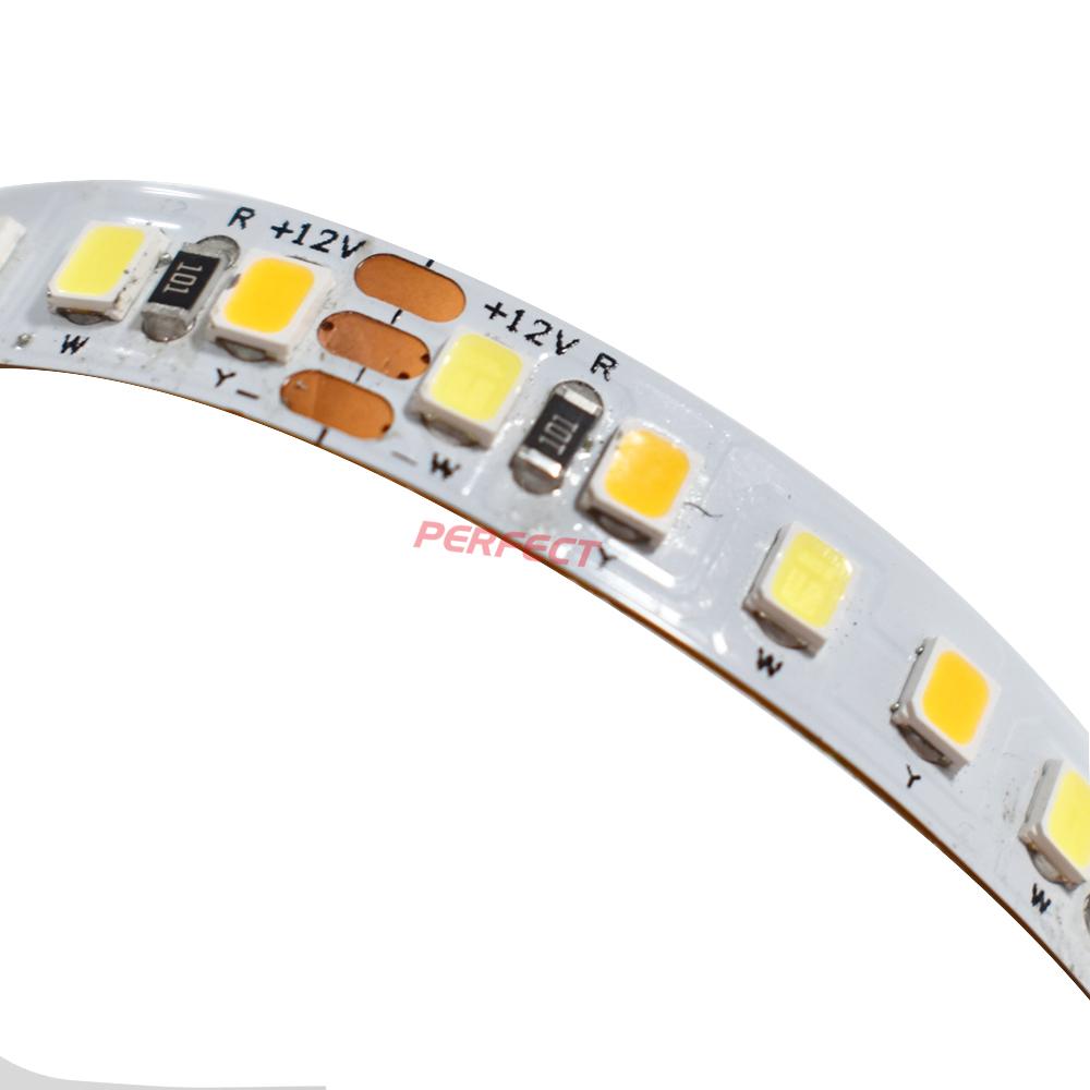 Dual white 2835LED Strip [168LED/M]-12V/24V